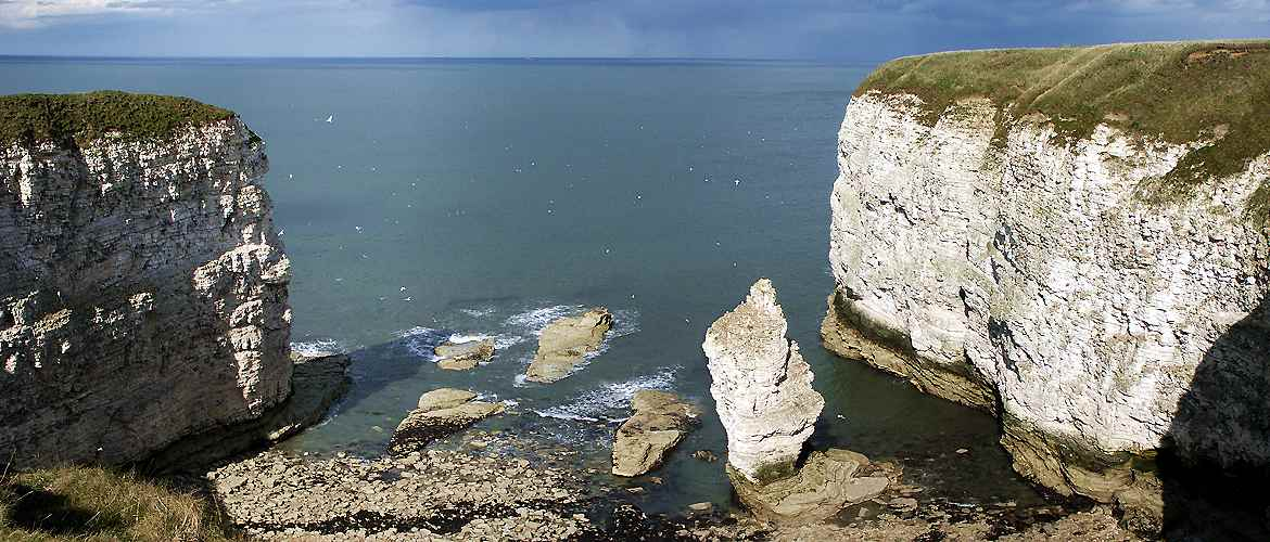 Flamborough head stack near North landing